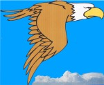 THE PECAN PARK EAGLE