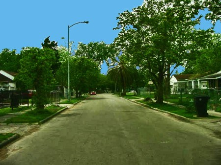 If a ball rolled this far on Japonica Street. it was well on its way to the the Japonica'Kernel concrete street marker that still remains standing at the corner. - Looking west from here, Eagle Field, now called Jponica Park, is located to the far right, just beyond that dark bushy tree that stands by the curb.